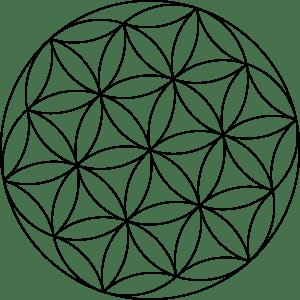 carlotheman-Seed-of-Life